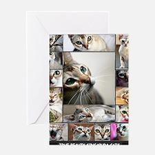 Singapura Cats Greeting Card