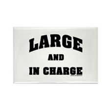 Large In Charge Rectangle Magnet