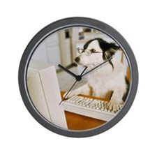 Border Collie Wearing Glasses Sitting a Wall Clock