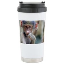 Curious young monkey in Travel Mug