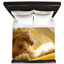 Poodle puppy on yellow chair King Duvet