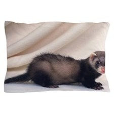 Ferret Standing on a White Blanket, Lo Pillow Case