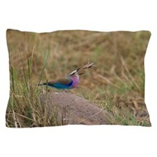Lilac-breasted Roller eating a locust Pillow Case