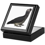 Baby African Gray Parrot Keepsake Box