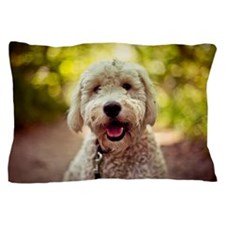 Portrait of golden doodle Pillow Case