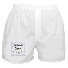 Yorkie Pawprint Boxer Shorts
