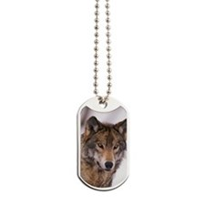Head shot of gray wolf Dog Tags