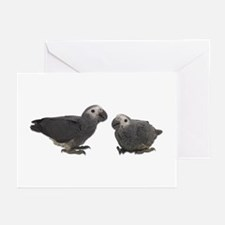 Baby African Gray Parrots Greeting Cards (Package