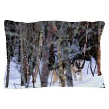 GREY WOLVES CANIS LUPUS IN FOREST Pillow Case