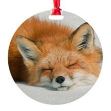 Fox sleeping in park. Ornament