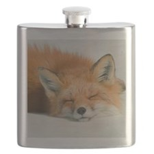Fox sleeping in park. Flask