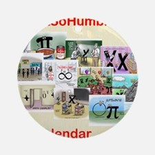 2013 Calendar - All New Mathtoons Round Ornament