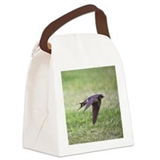 Swallow flying low over lawn. Canvas Lunch Bag