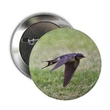 """Swallow flying low over lawn. 2.25"""" Button"""