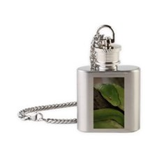 Green Tree Python, northern Austral Flask Necklace