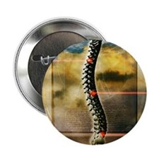 """The human spine 2.25"""" Button"""