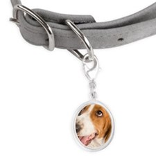 Dog Small Oval Pet Tag