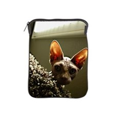 Hairless Cat Face with natural light m iPad Sleeve