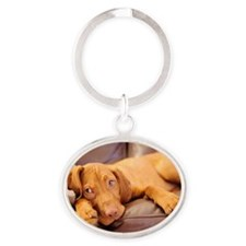 Lazy hungarian vizsla puppy dog Oval Keychain