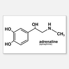 Adrenaline Rectangle Decal