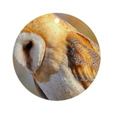 Barn owl looking down Round Ornament