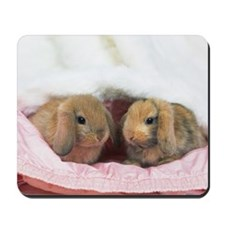 Closed Up Image of Two Lop Ear Rabbits W Mousepad