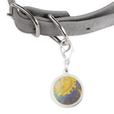 Sun & Moon Small Round Pet Tag