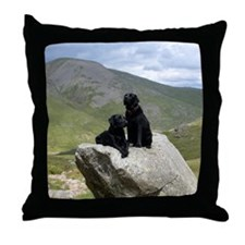 Two black Labrador dogs posing on roc Throw Pillow