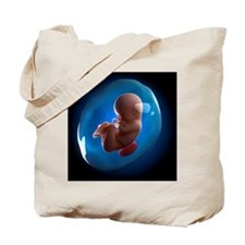 Foetus, artwork Tote Bag