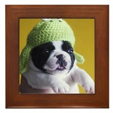 Frog puppy Framed Tile