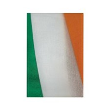 Close-up of the flag of Ireland Rectangle Magnet