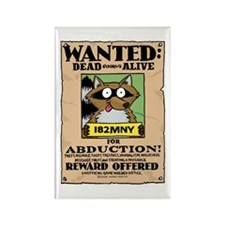 Raccoons Dead or Alive Rectangle Magnet