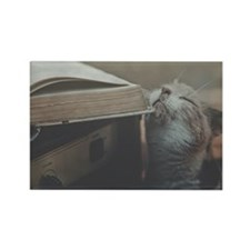 Cat with old book and guitar ampl Rectangle Magnet