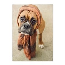 Clyde boxer pup wearing scarf. 5'x7'Area Rug