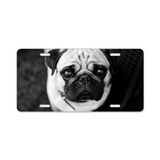 Pug with big eyes Aluminum License Plate