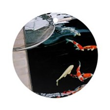 Koi Carps and Net Round Ornament