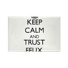 Keep Calm and TRUST Felix Magnets
