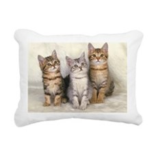 Three American Shorthair Rectangular Canvas Pillow