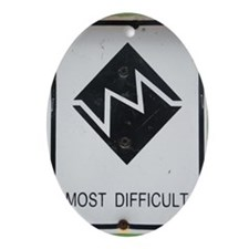 AT: Most Difficult Oval Ornament