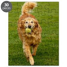 Pad2_Cover_Beebee-DG1111 Puzzle