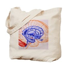Illustration of the limbic system of the  Tote Bag