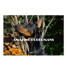 Doberman Cover image 2 Postcards (Package of 8)