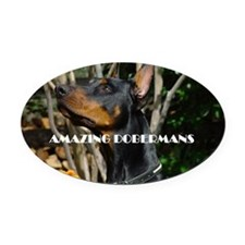 Doberman Cover image 2 Oval Car Magnet