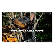 Doberman Cover image 2 Decal