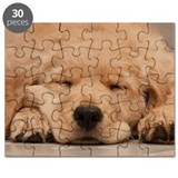Golden retriever Puzzles
