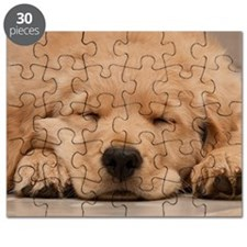 Golden Retriever Puppy Puzzle