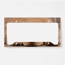 Golden Retriever Puppy License Plate Holder