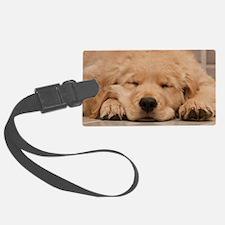 Golden Retriever Puppy Luggage Tag