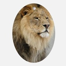 Lion Lovers Oval Ornament