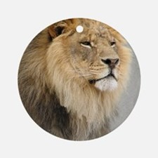 Lion Lovers Round Ornament